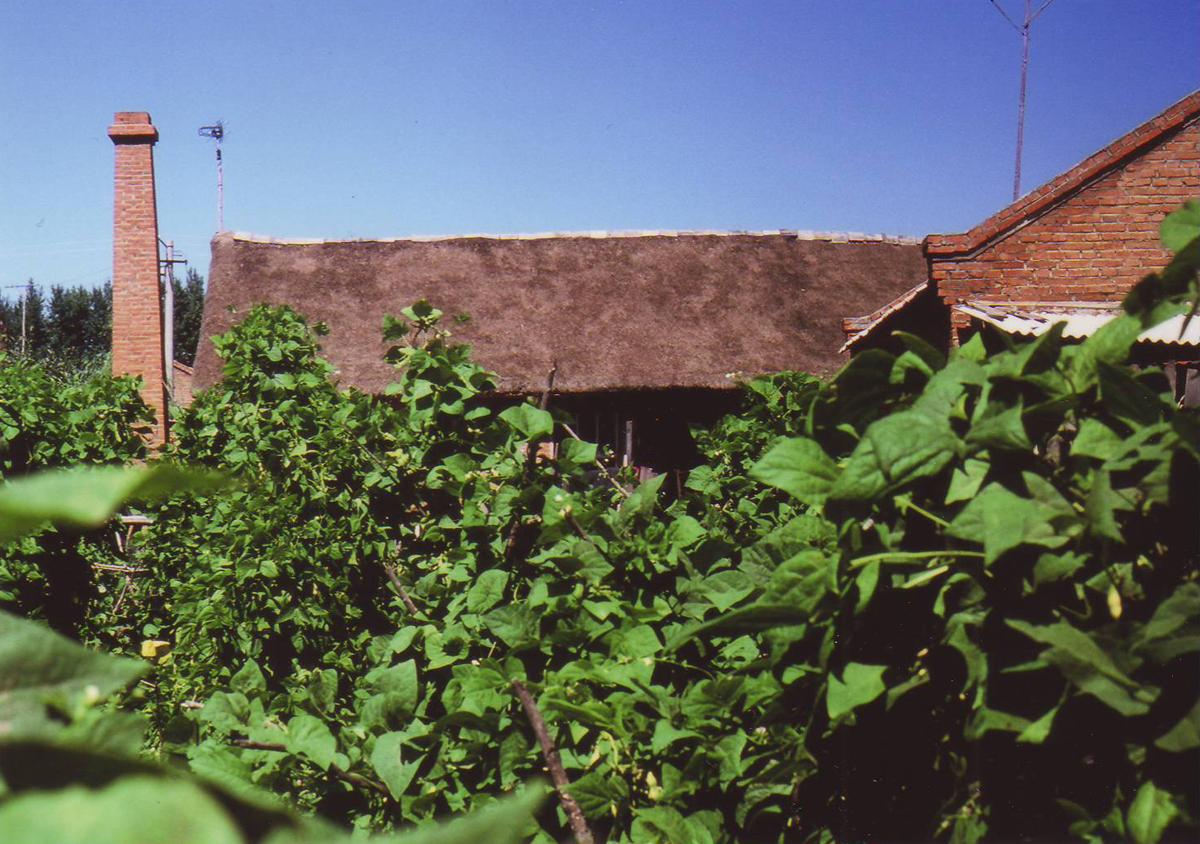 빈안진 조선족 낡은 초가집