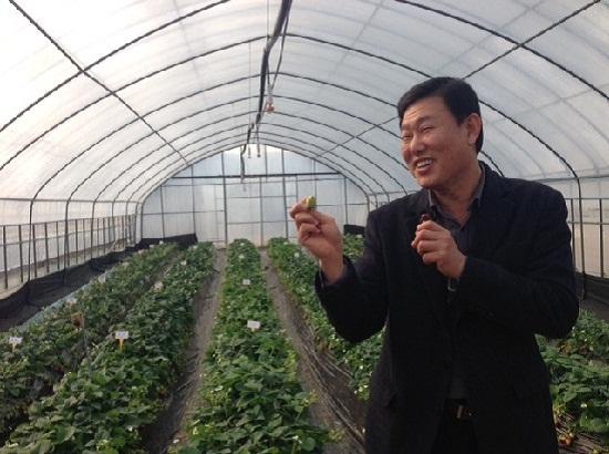 논산딸기시험장 김태일 장장이 설익은 딸기를 들고 환하게 웃고 있다.