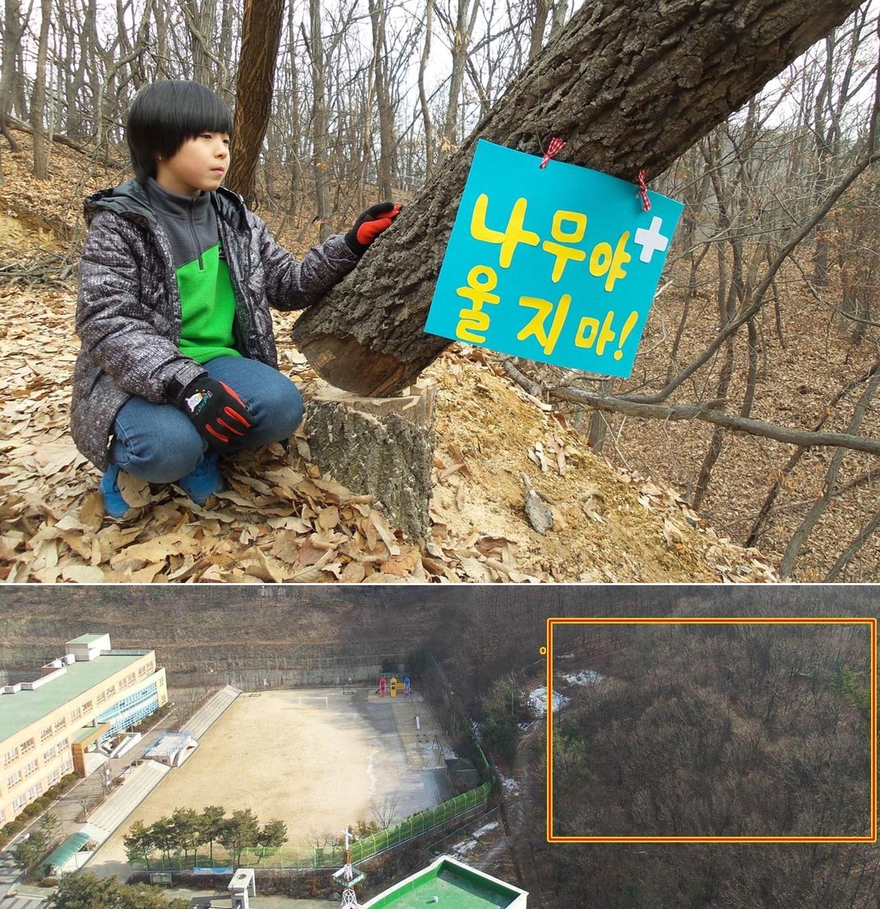 환경부의 부실한 환경영향평가 협의 덕에 초등학교 앞산이 몽창 잘려나간다. 사라지는 숲 면적이 초등학교보다 더 넓다. 숲이 사라지고 그 자리에 매일 화학약품으로 콘크리트 강도를 실험하는 시설이 들어섰다고 생각해보라. 과연 이게 정상적인 나라인가? 울고 있는 나무를 위로하는 아이들에게 더 이상 부끄럽지 않은 어른이 되자. 환경부와 용인시와 S사의 각성을 촉구한다.