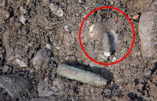 매장지에서 발굴된 M1소총 탄피(아래)와 탄두(원안). 탄두 아래 희생자 두개골로 보이는 뼈가 박혀 있다. 이날 발굴조사단은 M1소총 탄피 3개와 탄두 1개를 각각 발굴했다.