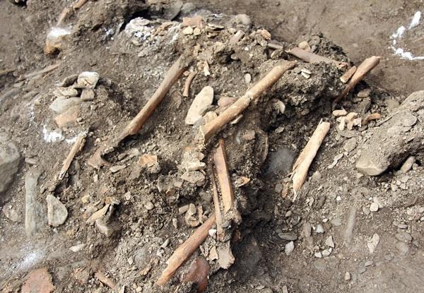 대전 산내 골령골 유해발굴 현장 (25일 오후)