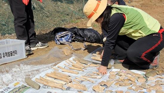한 유해발굴단원이 수습한 유해를 정돈하고 있다.