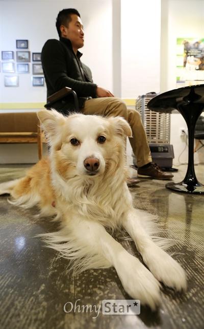 EBS스페셜 프로젝트 <세상에 나쁜 개는 없다>에서 반려견들의 이상 행동을 교육시키는 강형욱 훈련사가 16일 오후 서울 잠원동 보듬행동클리닉에서 오마이스타와 인터뷰를 하고 있다. 반려견인 다울이가 바닥에 누워 휴식을 취하고 있다.