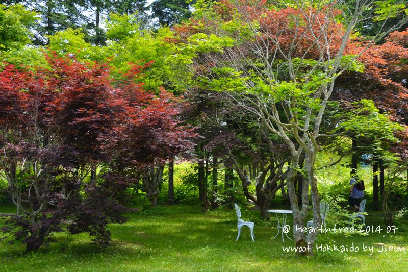 우리가 도착한 정원 모습. 가지런하고 예쁘게 정돈된 모습