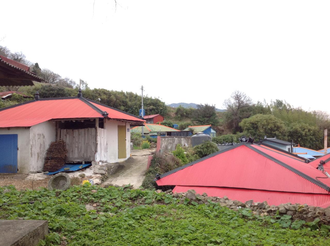 노도 마을 지금은 노도 북쪽 부근에 12 가구 정도가 살고 있다.