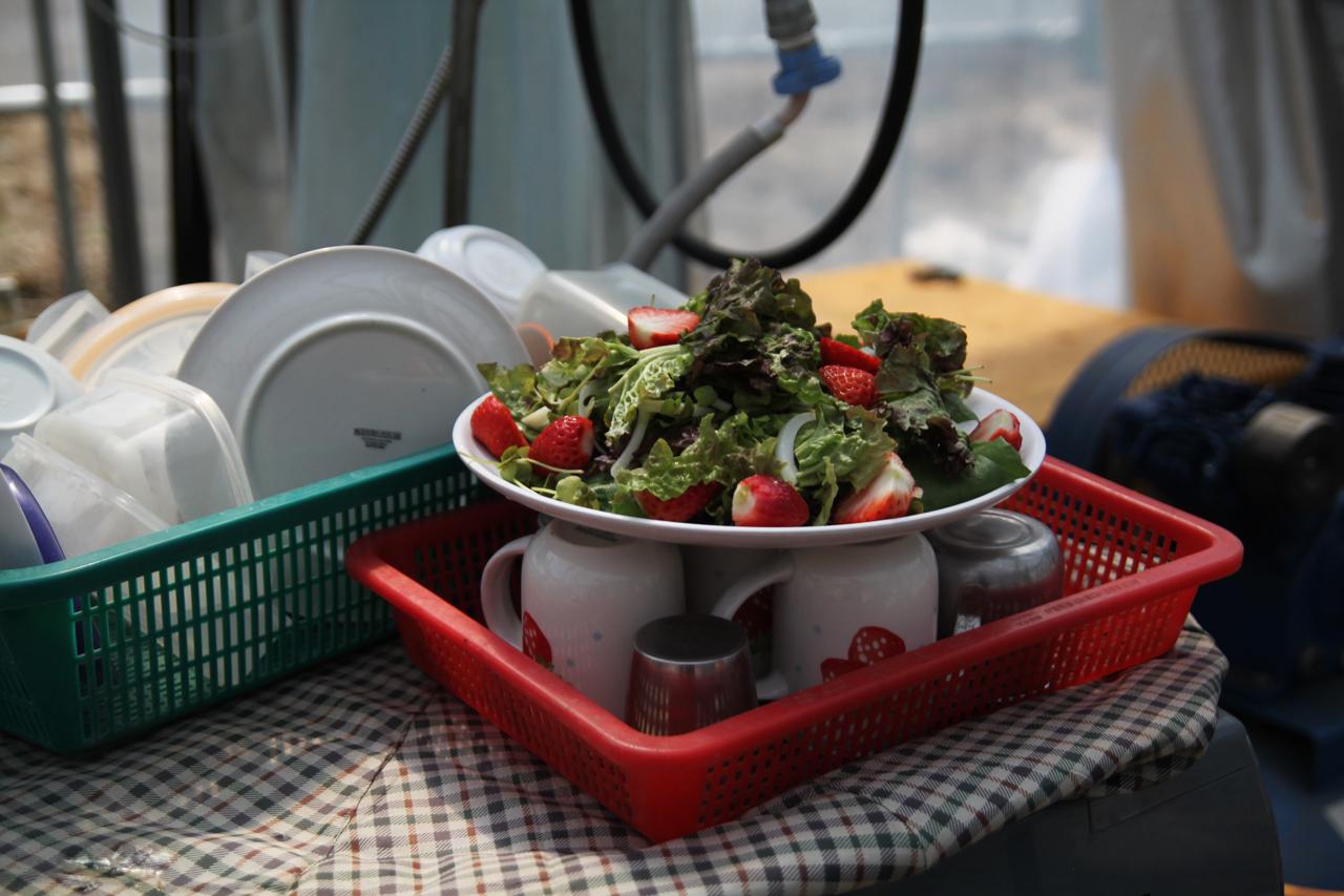 딸기 샐러드 맛있는 카레와 함께 먹었던 딸기 샐러드