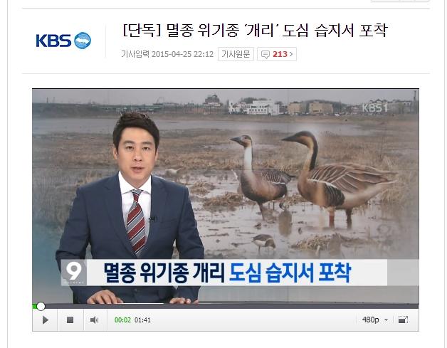 . KBS 단독