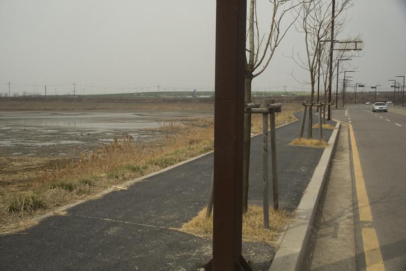 . 도로와 습지 사이에 아무것도 없어서 사람들로부터 휴식을 간섭받기 좋은 환경이다.