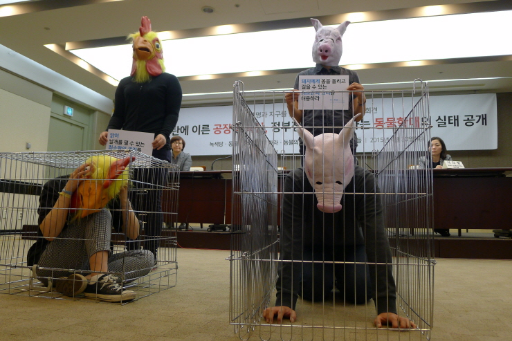 지난 4월30일 녹색당, 카라, 동변이 주최한 '파탄에 이른 공장식 축산, 정부정책이 조장하는 동물학대의 실태 공개' 기자회견에서 감금틀에 갇힌 닭과 돼지의 고통을 상징하는 퍼포먼스가 진행되고 있다.