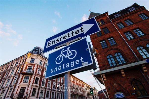 덴마크의 자전거 타는 풍경