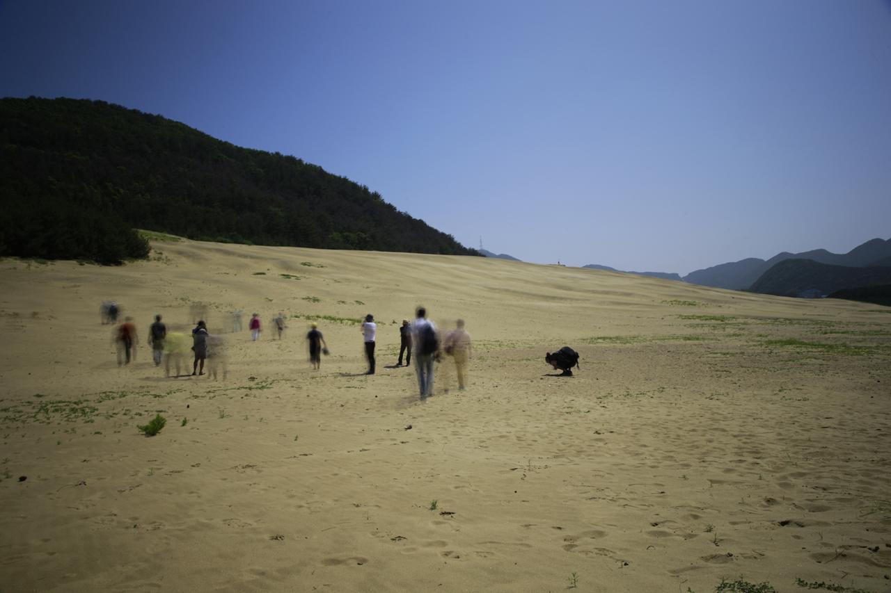 대청도 모래사막 국내에서 유일하게 모래산이 형성된 곳이라고 하며, 한국의 사하라로 불리운다.
