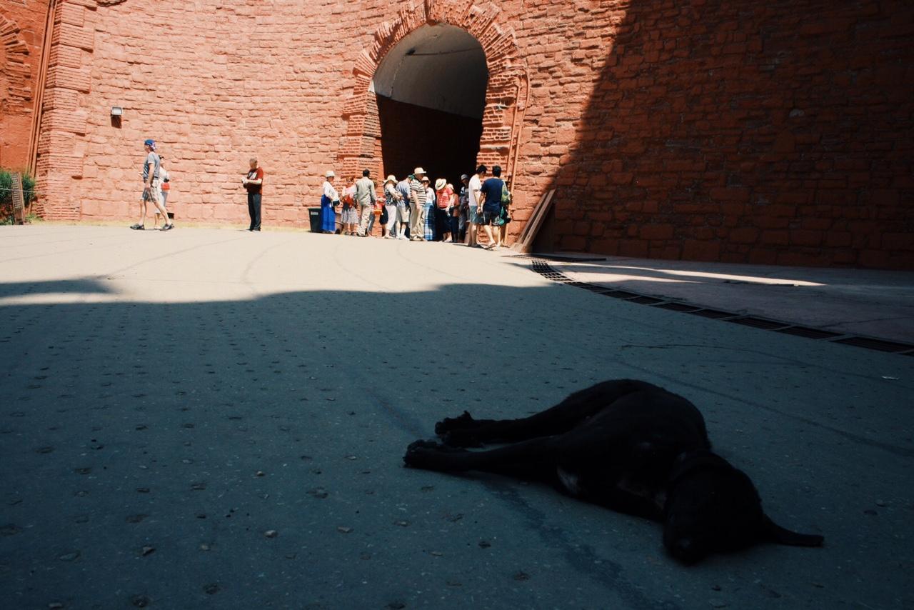 레드 포트 (Red Fort) 붉은 요새에서의 달콤한 시에스타