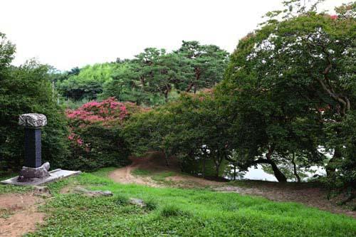 명옥헌에서 내려다 본 원림 풍경. 배롱나무와 노송이 연못을 감싸고 있다.