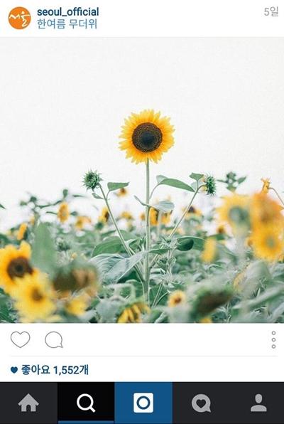 세로 화면에 최적화된 인스타그램 서울특별시시 공식 인스타그램 계정의 포스팅 갈무리