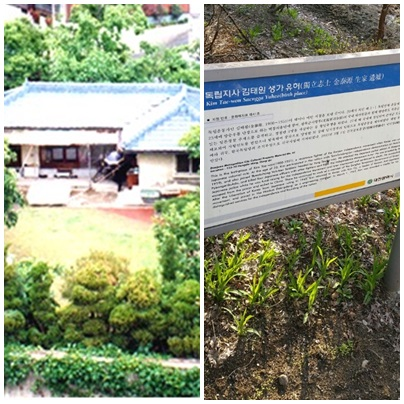 대전시가 1997년 문화재자료로 지정한 대전 김태원 생가터와 설명문. 하지만 인근 주민들은 김태원이 이곳에서 어린 시절을 산 적이 없다고 말하고 있다.