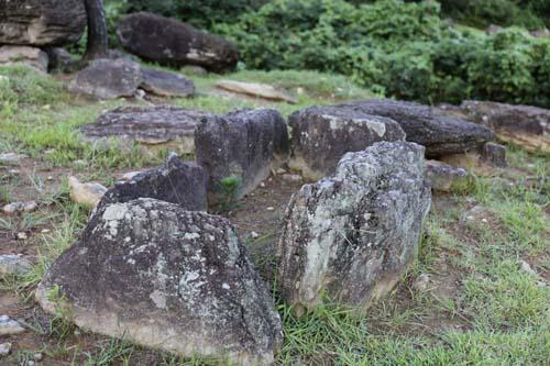 감태바위 채석장 부근의 고인돌 전시장. 갖가지 모양의 고인돌이 흩어져 있다.