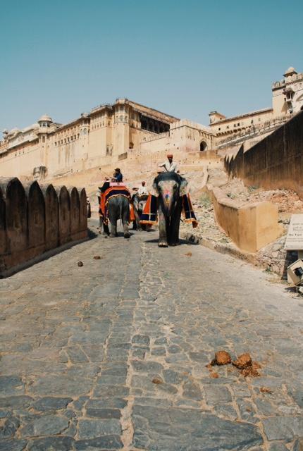 암메르 포트(Amber Fort) 올라가는 길. 스케일이 남다른 코끼리 배설물이 보인다.