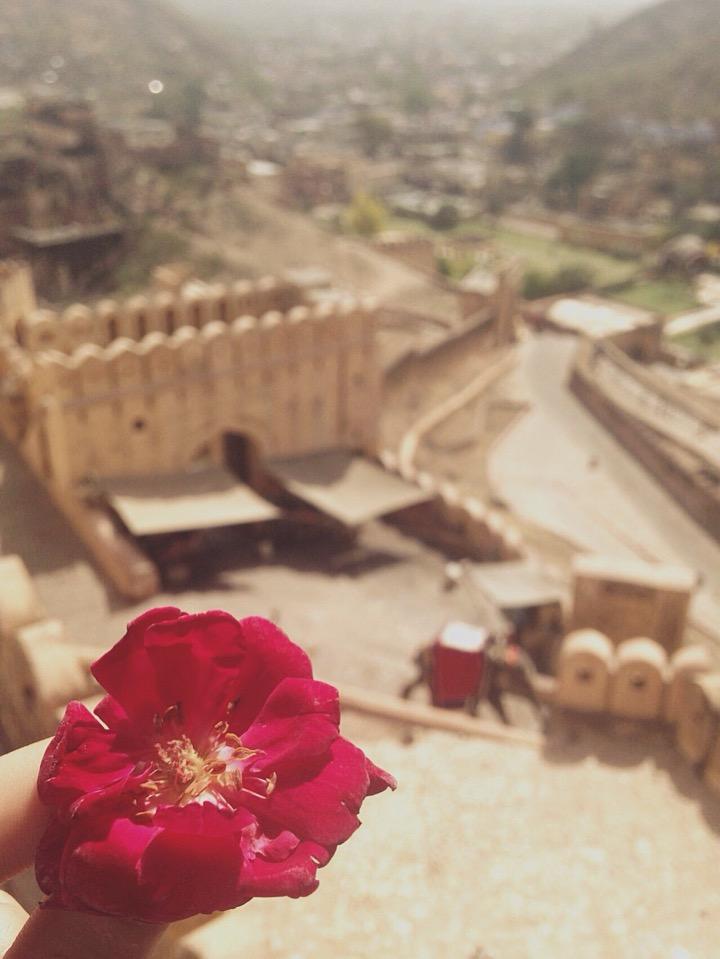 암메르 포트(Amber Fort)를 들어가는 입구에서 받았던 꽃 한송이