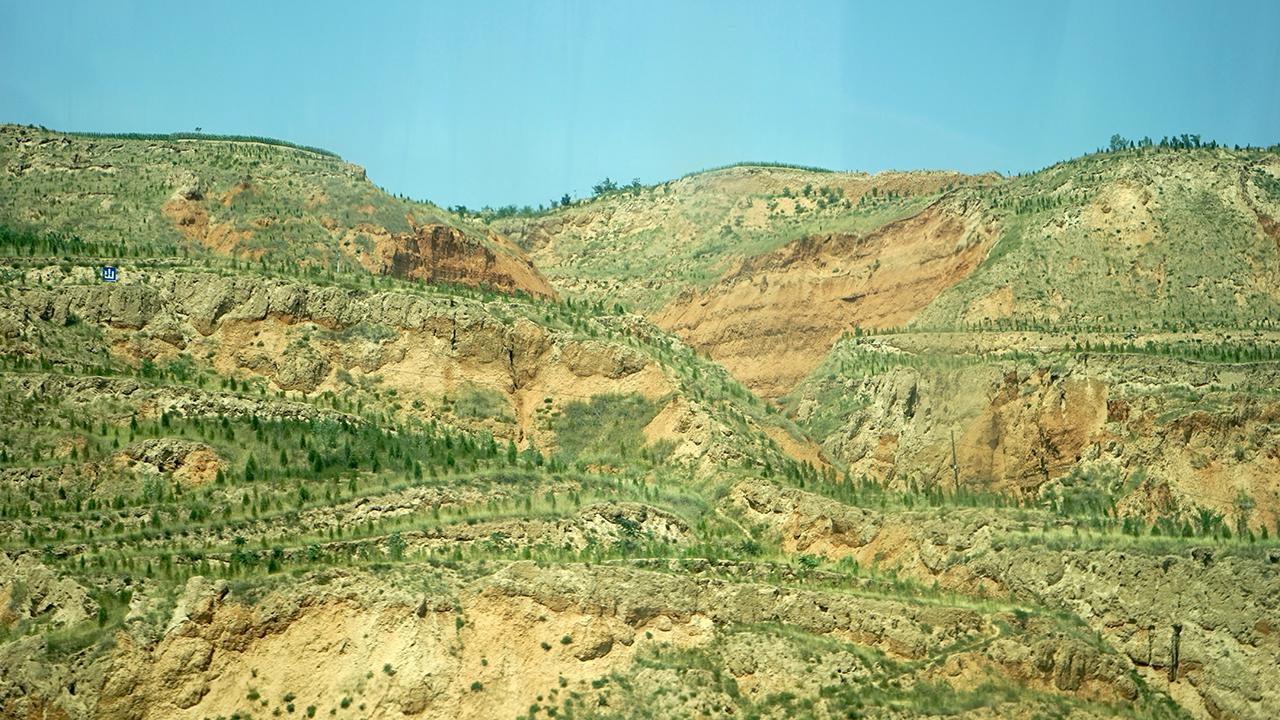 황토산과 조림 모습
