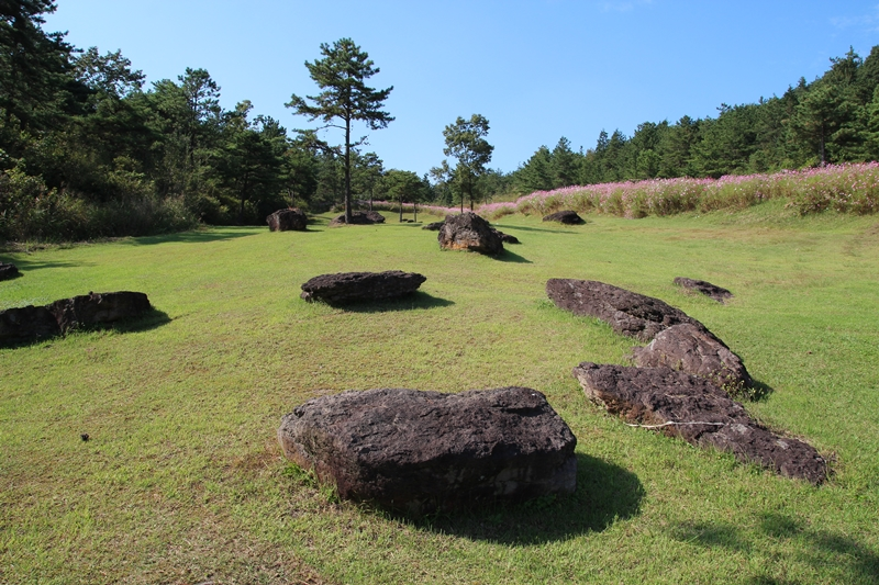 남방식 고인돌은 중부이남 지방에 많이 분포되어 있다.