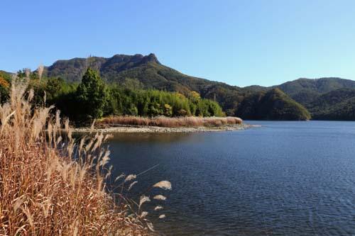 화순적벽을 품은 동복호 풍경. 억새와 어우러진 호수가 잔잔하다.
