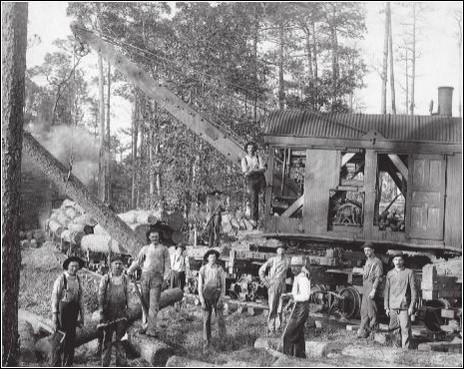 아름드리 숲을 베는 기계와 '벌목회사 노동자'