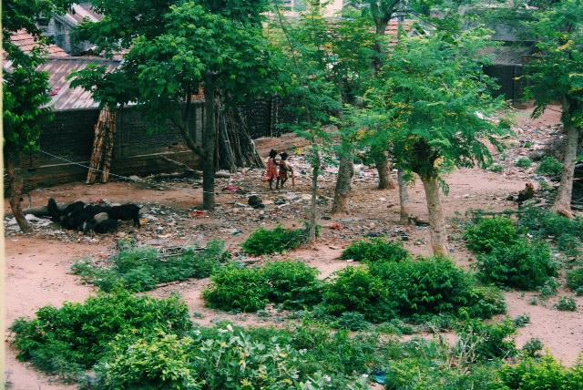 숙소에서 바라 본 마을의 정경.