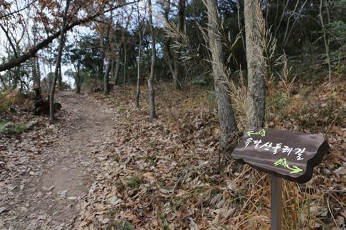 유달산의 산허리를 따라 도는 유달산 둘레길. 유달산에서 온금동 '다순구미'로 가는 길목이다.