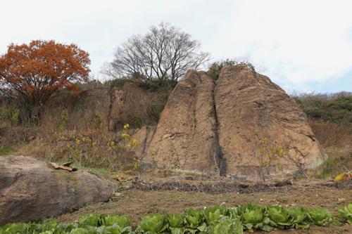 다순구미 마을 뒤 텃밭에서 만난 여근석. 겨울에 만난 바위가 더 쓸쓸해 보인다.