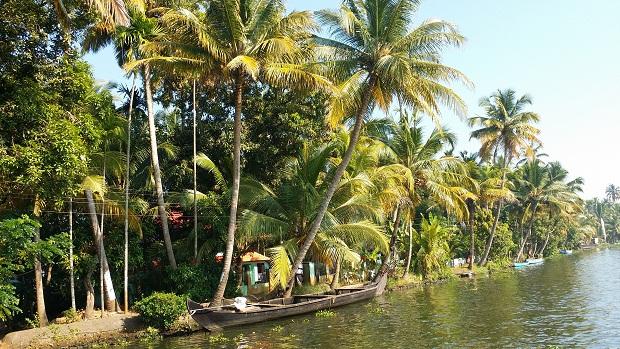 수로 양안으로 끝없이 펼쳐지는 야자나무 숲 '이곳 알래피 수로에 이런 열대림이 없었다면 여행은 맛은 어땠을까?' 여러 조건들이 어우러질 때 훌륭한 풍광을 자아내는 것이다.