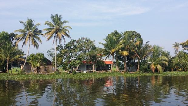 열대 과일나무들 사이의 동네 강 위에는 부레옥잠이 떠 있고, 야자와 망고 나무 숲 속에는 집 몇 채가 들어앉아 그림 같은 풍경을 보여주고 있다.