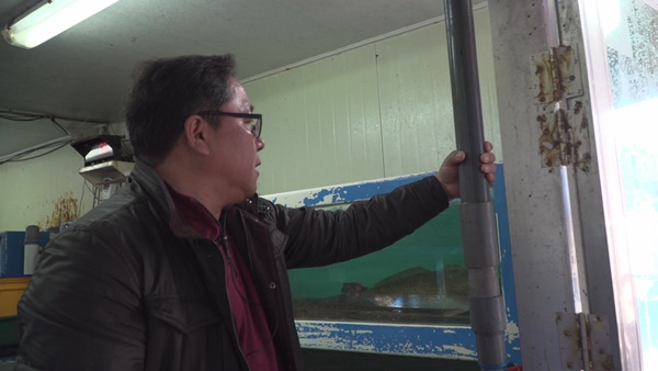 현재 수산시장에서 사용하고 있는 바닷물 공급 파이프는 훨씬 굵다 (사진 : 칼라TV)