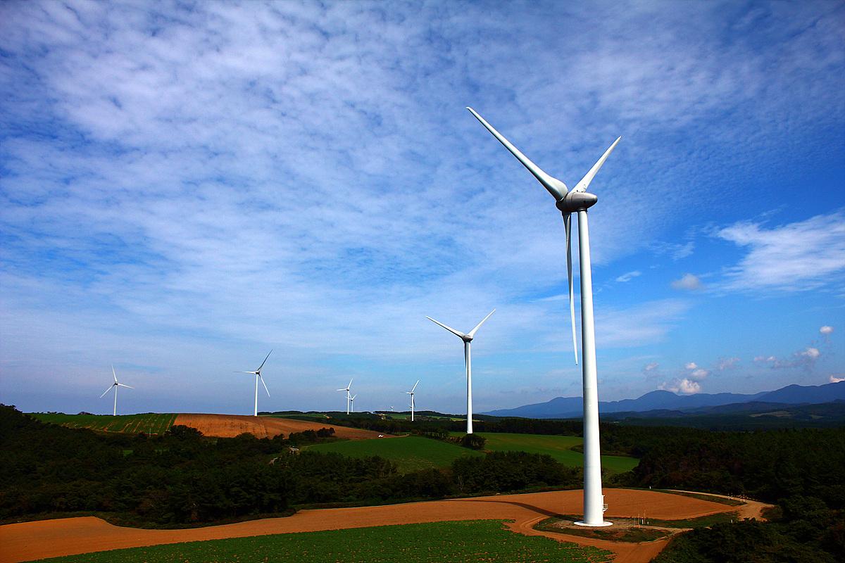 웨스파쓰바키야마 전망대에서 바라본 풍력발전기.