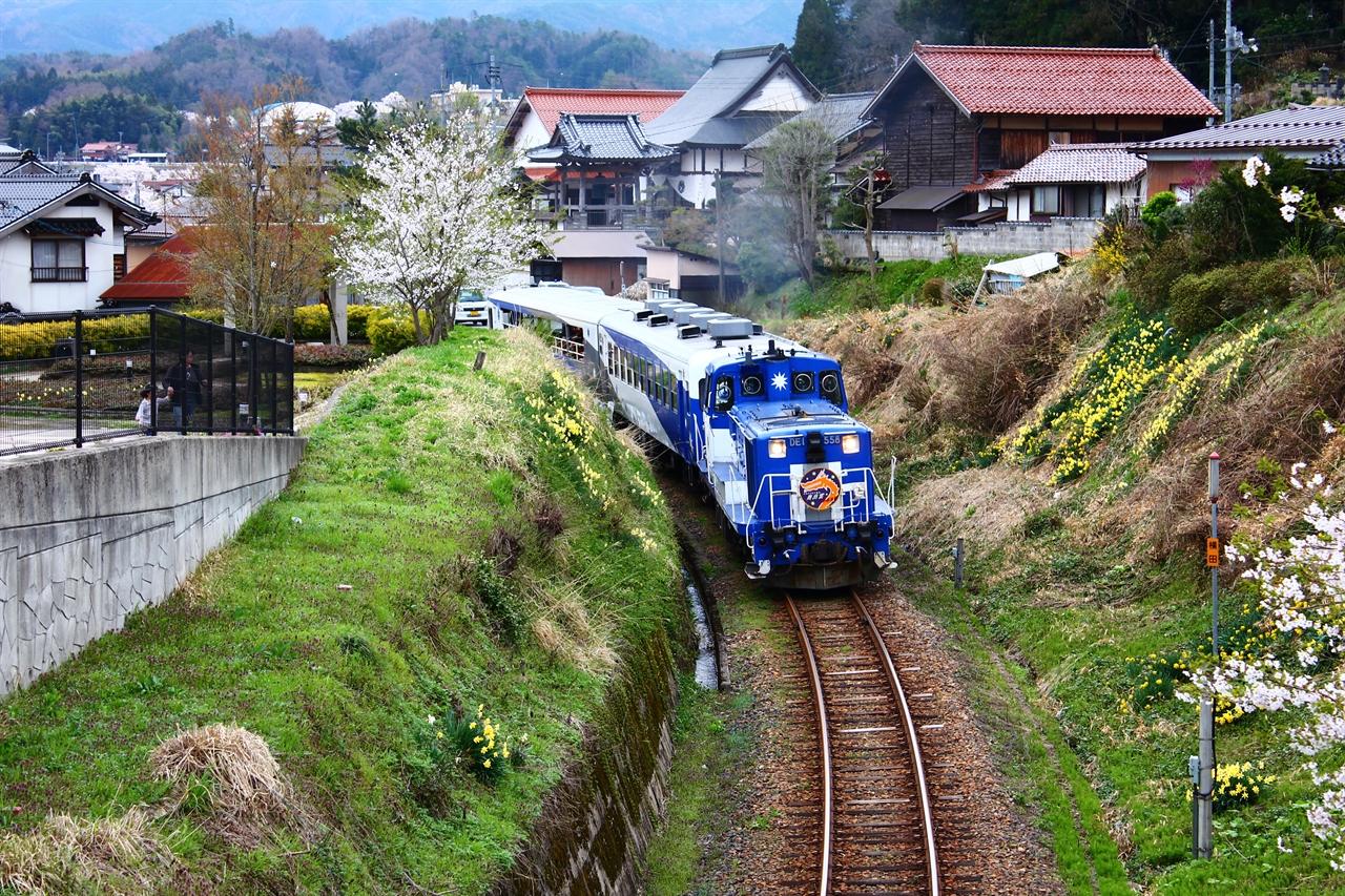 봄을 향해 달리는 오쿠이즈모오로치호.