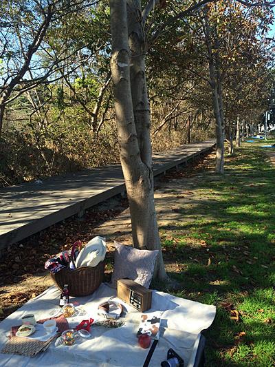 호수 피크닉 산책로 데크 아래 나무그늘은 명당 중의 명당.