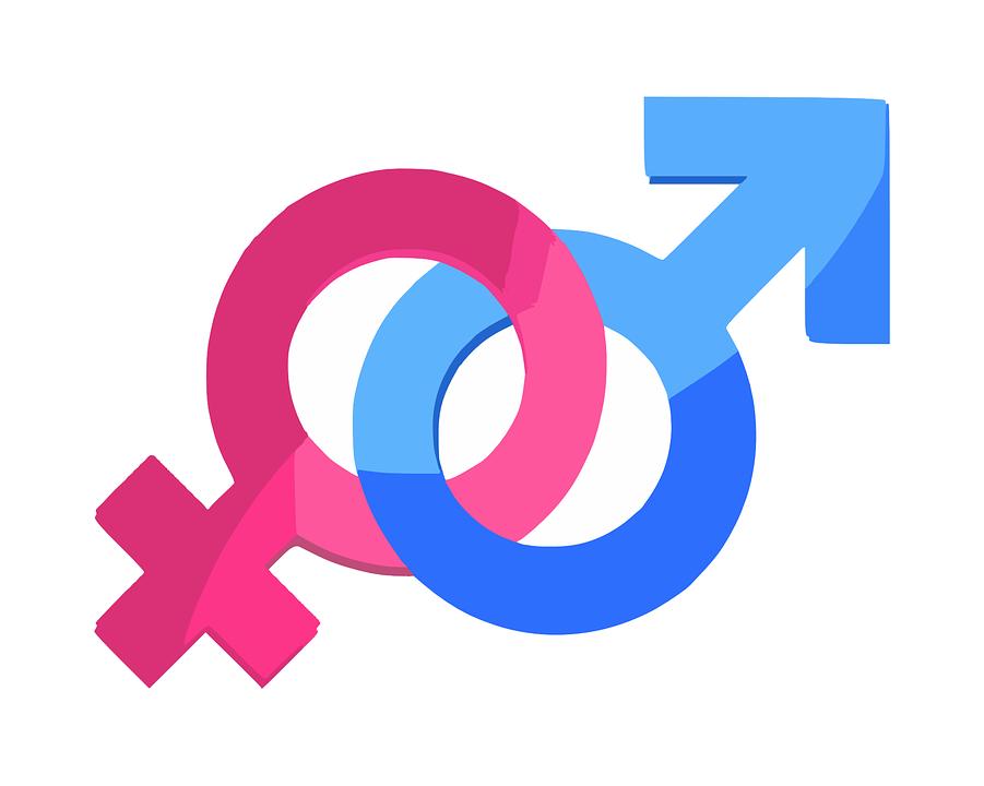 성별  성별