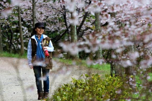 학익정에서 벚꽃 터널 사이로는 흙길이다. 마치 삶에 지친 나를 위로하듯 촉촉한 흙의 느낌이 딱딱한 신발을 너머로 마음을 편하게 한다.