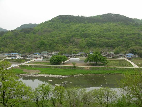고향 진뫼마을의 봄 앞산 절골에서 바라본 고향마을