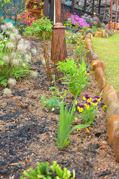 아내의 꽃동냥으로 이루어진 꽃밭