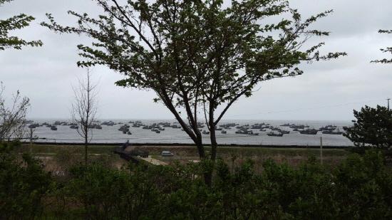 연평도 중국어선 지난 5월 2일 강풍을 동반한 비바람이 몰아쳤을 때도 중국어선은 조업를 했다. 그 뒤 강풍이 거세자 연평도 연안으로 대피한 중국어선 모습 .