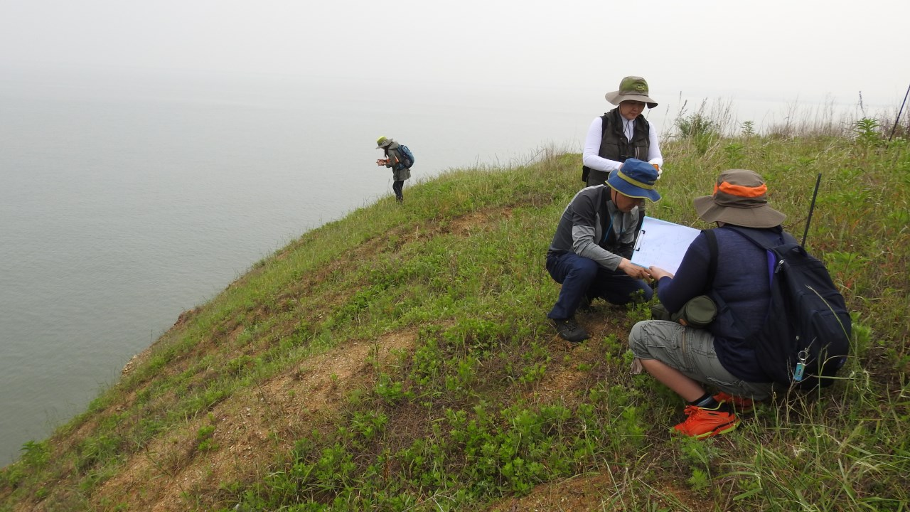 검은머리물떼새 알 발견 야생조류교육센터 그린새 서정화 대표가 화성환경운동연합 활동가와 함께 농섬에서 발견한 검은머리물떼새 알의 크기를 재고 있다.