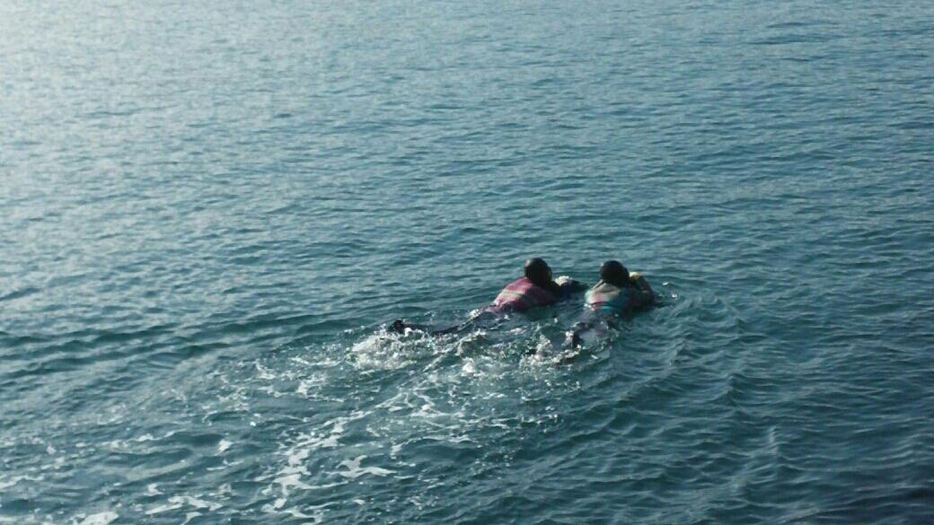 지난 겨울 자맥질 중인 두 해녀가 나란히 오동도 바다를 헤엄치고 있다.