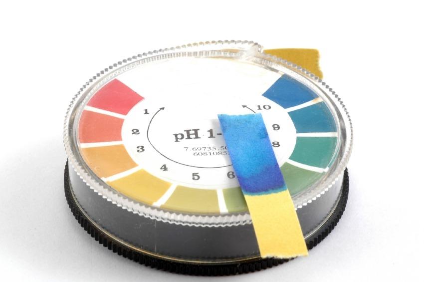 리트머스지 물질의 산성, 염기성 농도인 pH 수치에 따라 색이 변한다.
