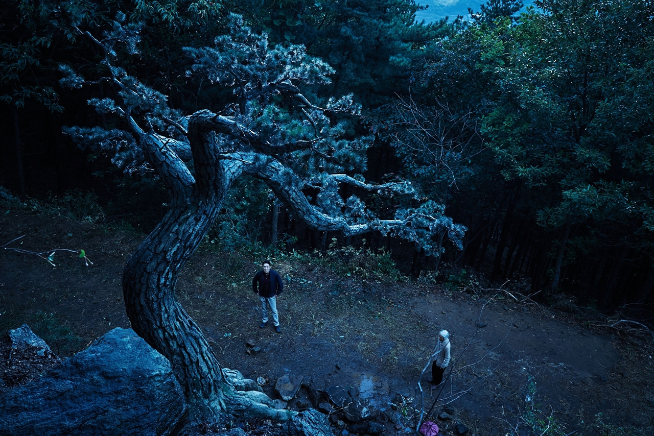 <사냥>의 모든 비극이 시작되는 장소. 거대한 소나무가 선 언덕.