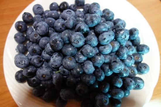 시골집에서 수확한 블루베리