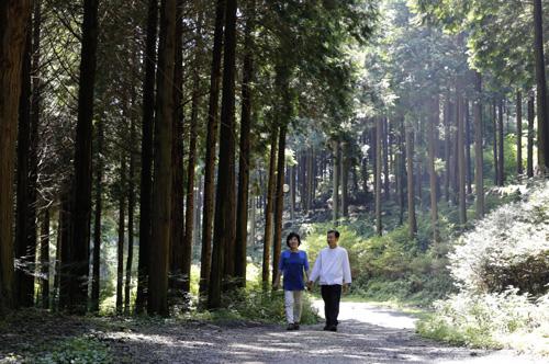무등산편백휴양림이 품은 편백숲. 햇살이 내리쬐는 여름이지만 편백숲은 그늘이 드리워져 선선하다. 그 길을 두 사람이 걷고 있다.