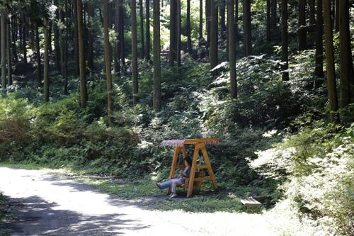무등산편백휴양림의 편백숲에 들어앉아 있는 나무그네. 숲길을 걷던 연인이 그네에 앉아 흔들거리고 있다.