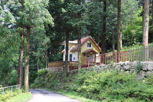 무등산편백휴양림에 들어앉은 숲속의집. 편백숲 오솔길과 떨어진 숲속에 여행객들이 쉴 수 있는 집이 띄엄띄엄 들어서 있다.