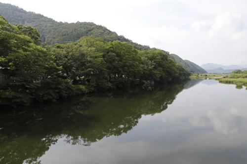 화순 둔동마을 숲정이. 동복천변에 자리한 마을숲이다. 빼어난 풍광으로 많은 사람들의 발길을 유혹한다.