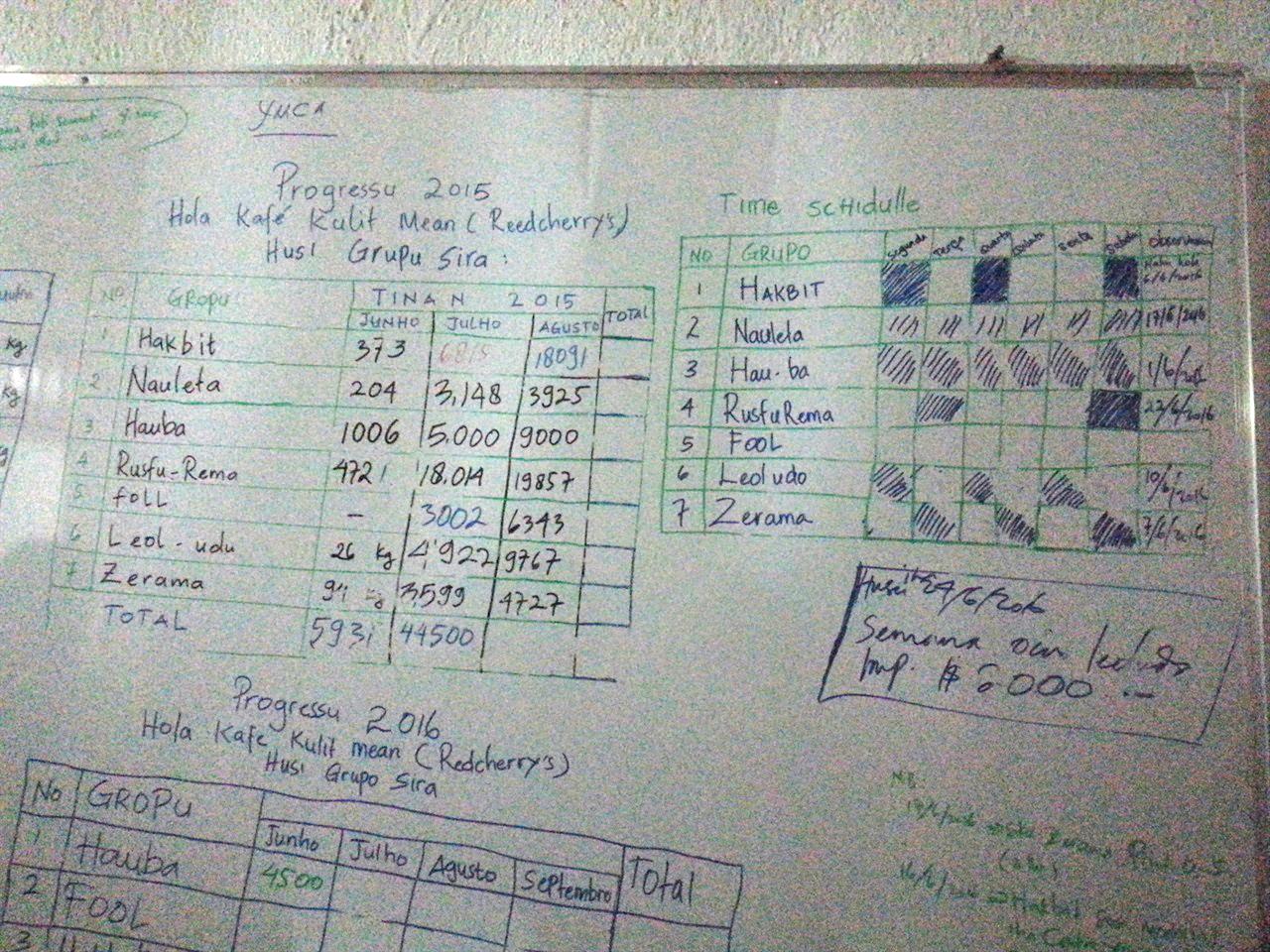 연도별 커피 생산량 로뚜뚜 피스커피 사무실 벽면에 기록해 놓은 소그룹 및 연도별 커피 생산량